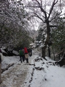 Snowy Descent to Namche